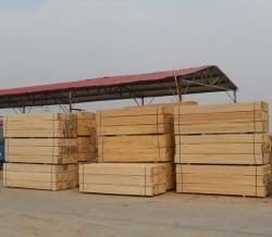 重慶木材廠房